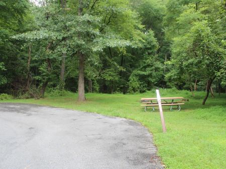 Greenbelt Park Campground Site 147
