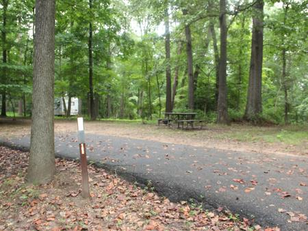 Greenbelt Park Campground Site 152