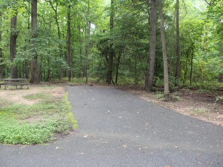 Greenbelt Park Campground Site 159