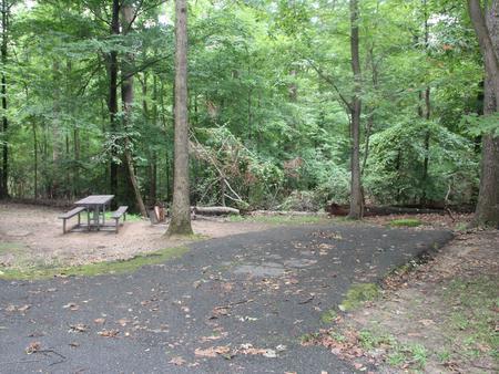 Greenbelt Park Campground Site 162