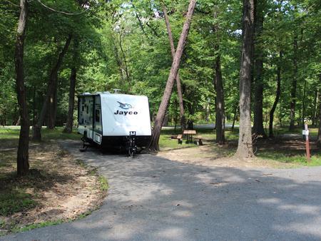 Greenbelt Park Campground Site 64