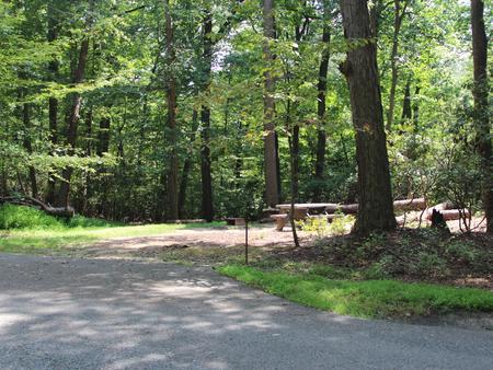 Greenbelt Park Campground Site 68