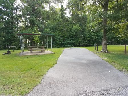 A photo of Site 03 of Loop MAGNOLIA RIDGE  at MAGNOLIA RIDGE with Picnic Table, Electricity Hookup, Waterfront, Lantern Pole
