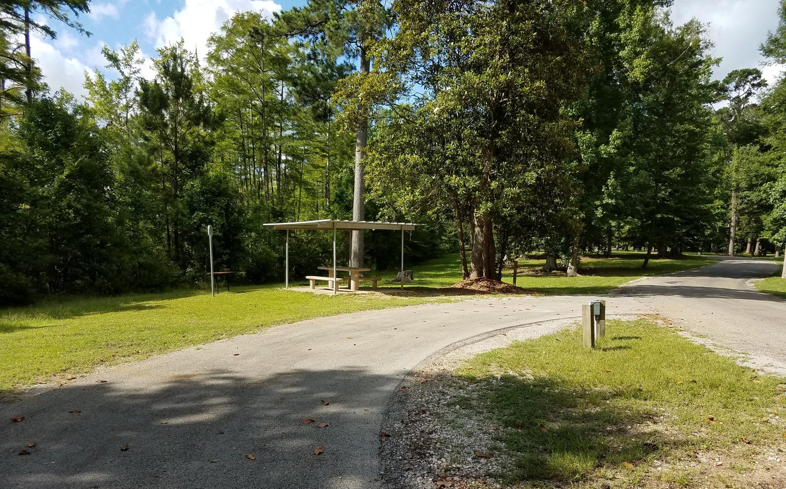 A photo of Site 09 of Loop MAGNOLIA RIDGE  at MAGNOLIA RIDGE with Picnic Table, Electricity Hookup, Fire Pit, Lantern Pole, Water Hookup