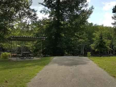 A photo of Site 29 of Loop MAGNOLIA RIDGE  at MAGNOLIA RIDGE with Picnic Table, Fire Pit, Waterfront, Lantern Pole
