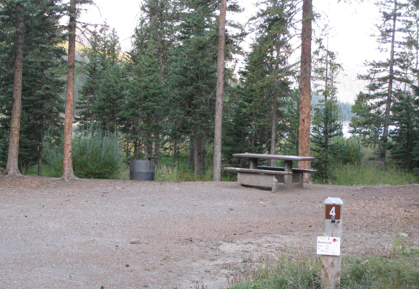 Site 4, campsite surrounded by pine trees, picnic table & fire ringSite 4
