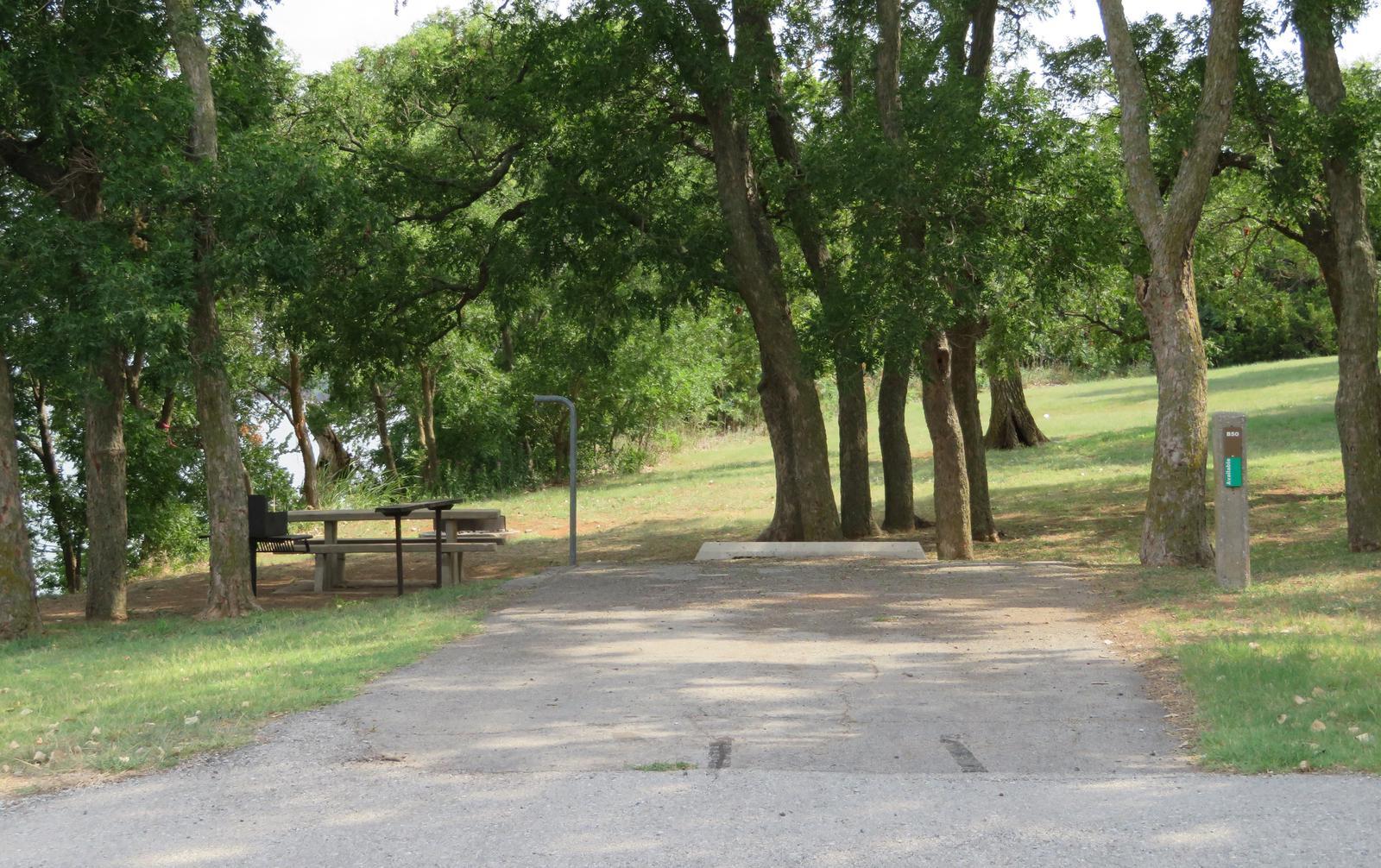 Big Bend B50Big Bend B Campground Site 50