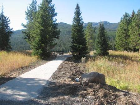 Site 7, campsite surrounded by pine trees, picnic table & fire ringSite 7