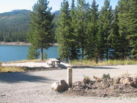 Site 11, campsite surrounded by pine trees, picnic table & fire ringSite 11