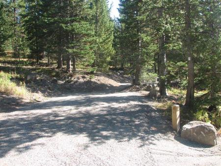 site 14, campsite surrounded by pine trees, picnic table & fire ringSite 14