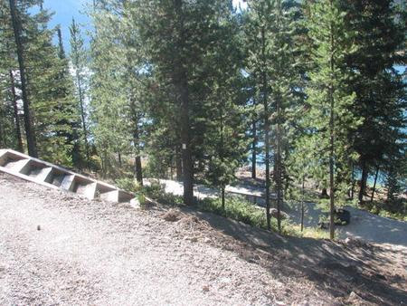 Site 15, campsite surrounded by pine trees, picnic table & fire ringSite 15