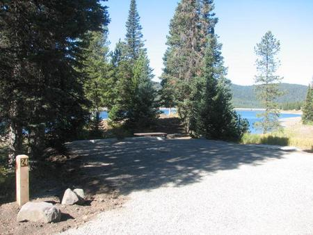 Site 24, campsite surrounded by pine trees, picnic table & fire ringSite 24