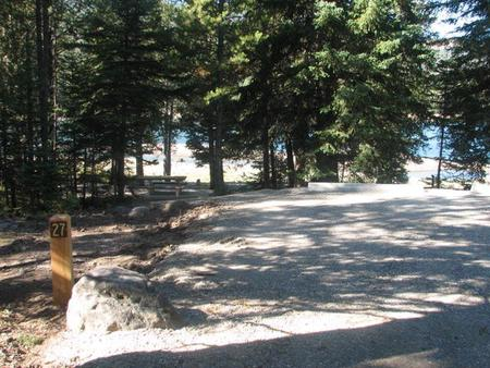 Site 27, campsite surrounded by pine trees, picnic table & fire ringSite 27