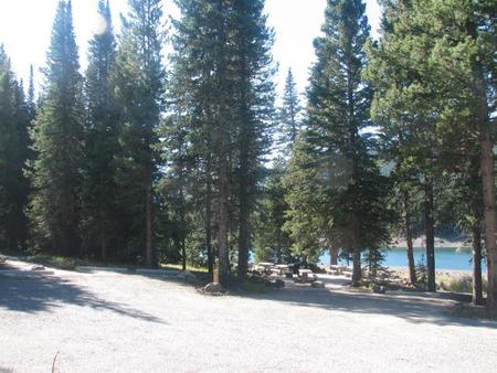 Group Site 28, campsites surrounded by pine trees, picnic table & fire ringGroup Site 28