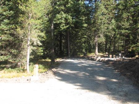 Site 29, campsite surrounded by pine trees, picnic table & fire ringSite 29