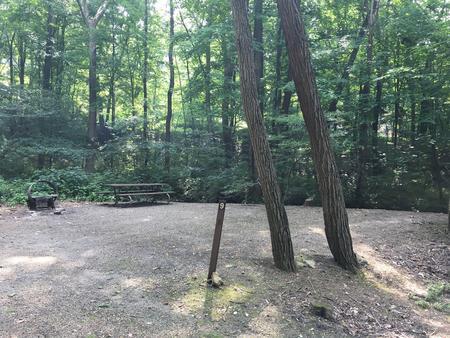 Site 9