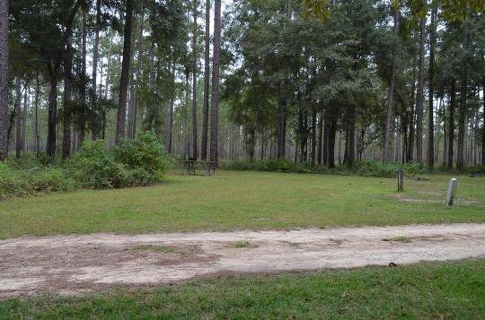 Wright Lake Campground Site 8 Full Site View