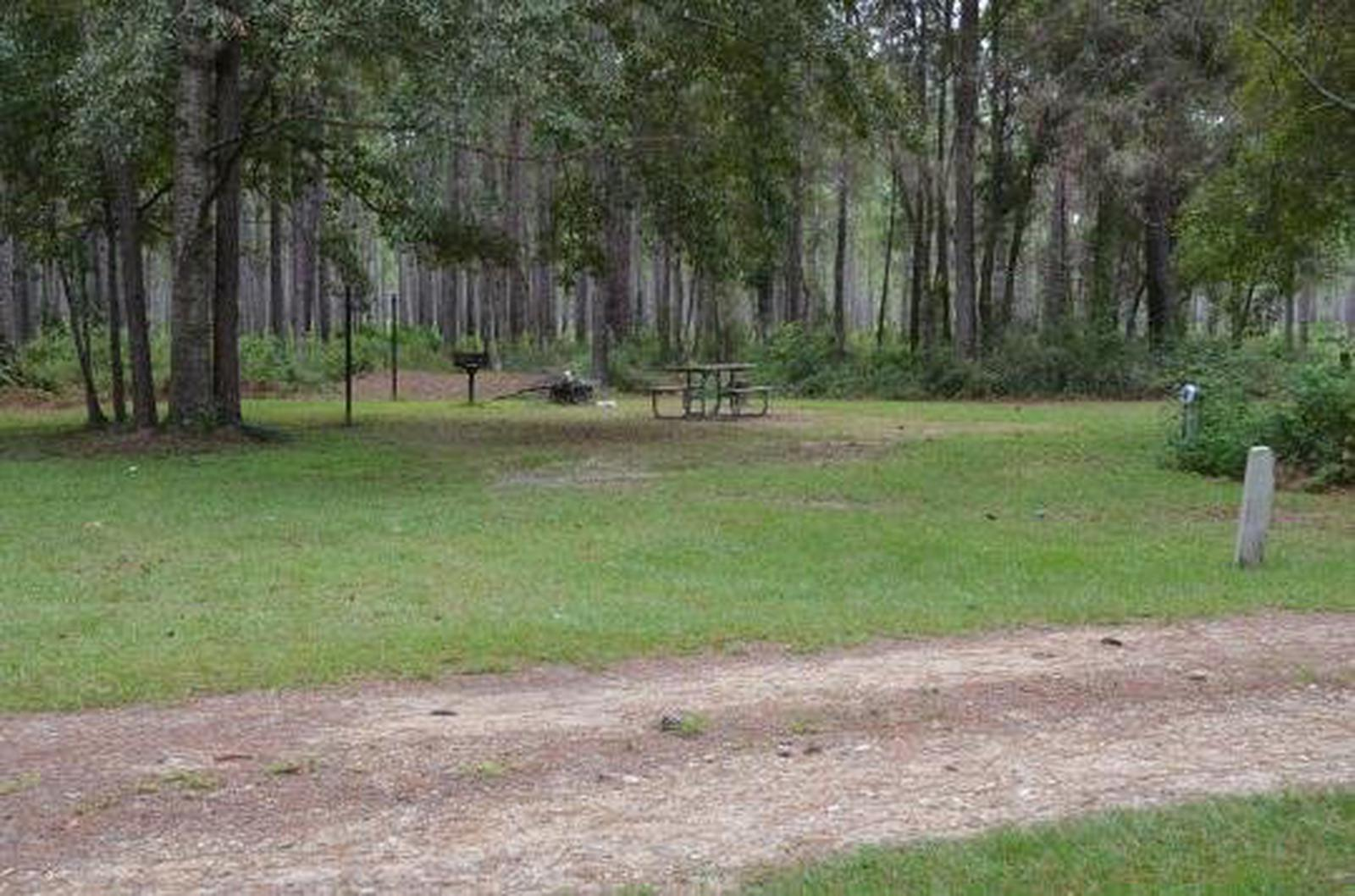 Wright Lake Campground Site 12 Site View