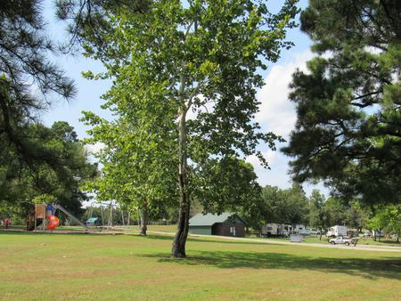 SHEPPARD POINTPlayground, restroom, and campsites at Sheppard Point.