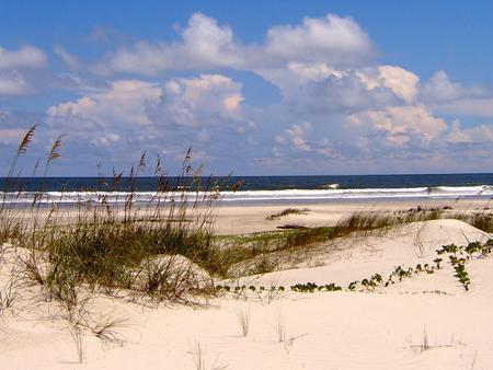 undeveloped beach complete with sea oat covered dunes, light sands, blue sky, and crashing wavesCumberland Island is home to 17 miles of undeveloped beach offering excellent opportunities for beach combing, swimming, photography, and solitude.