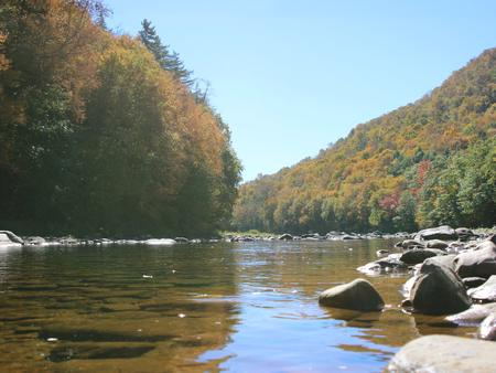 Winhall BrookWest River in Early Fall