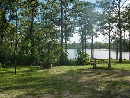 CAMEL LAKE CAMPGROUND SITE 1