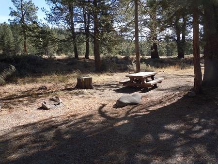 Campsite #3Lower Little Truckee Campground, Campsite 3