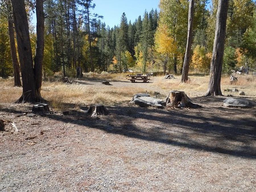 Campsite 4Lower Little Truckee Campground, Campsite 4