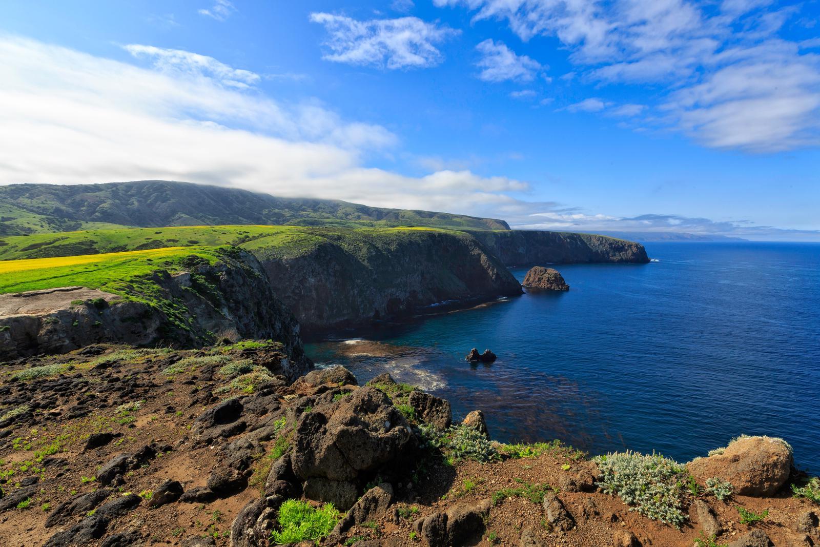 Coastal bluff overlooking rugged, steep cliffs with ocean below. Cavern Point, Santa Cruz Island
