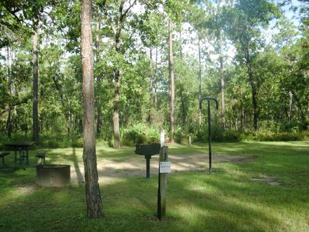 CAMEL LAKE CAMPGROUND SITE