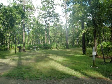 CAMEL LAKE CAMPGROUND SITE 7