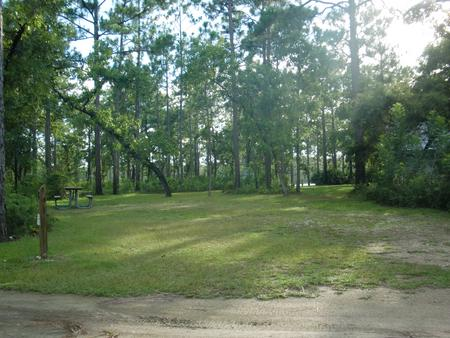 CAMEL LAKE CAMPGROUND SITE 8