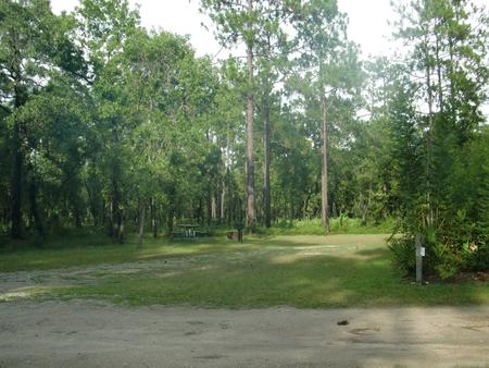 CAMEL LAKE CAMPGROUND SITE 9
