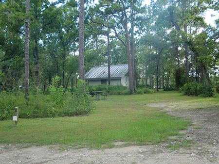 CAMEL LAKE CAMPGROUND SITE 10