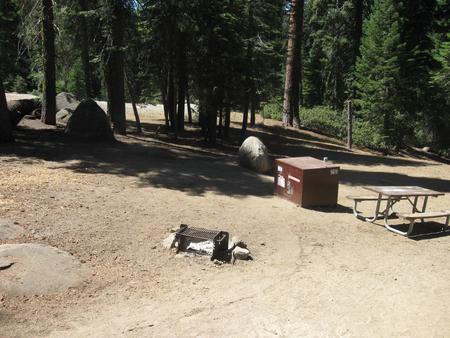 Site 169, partial shade