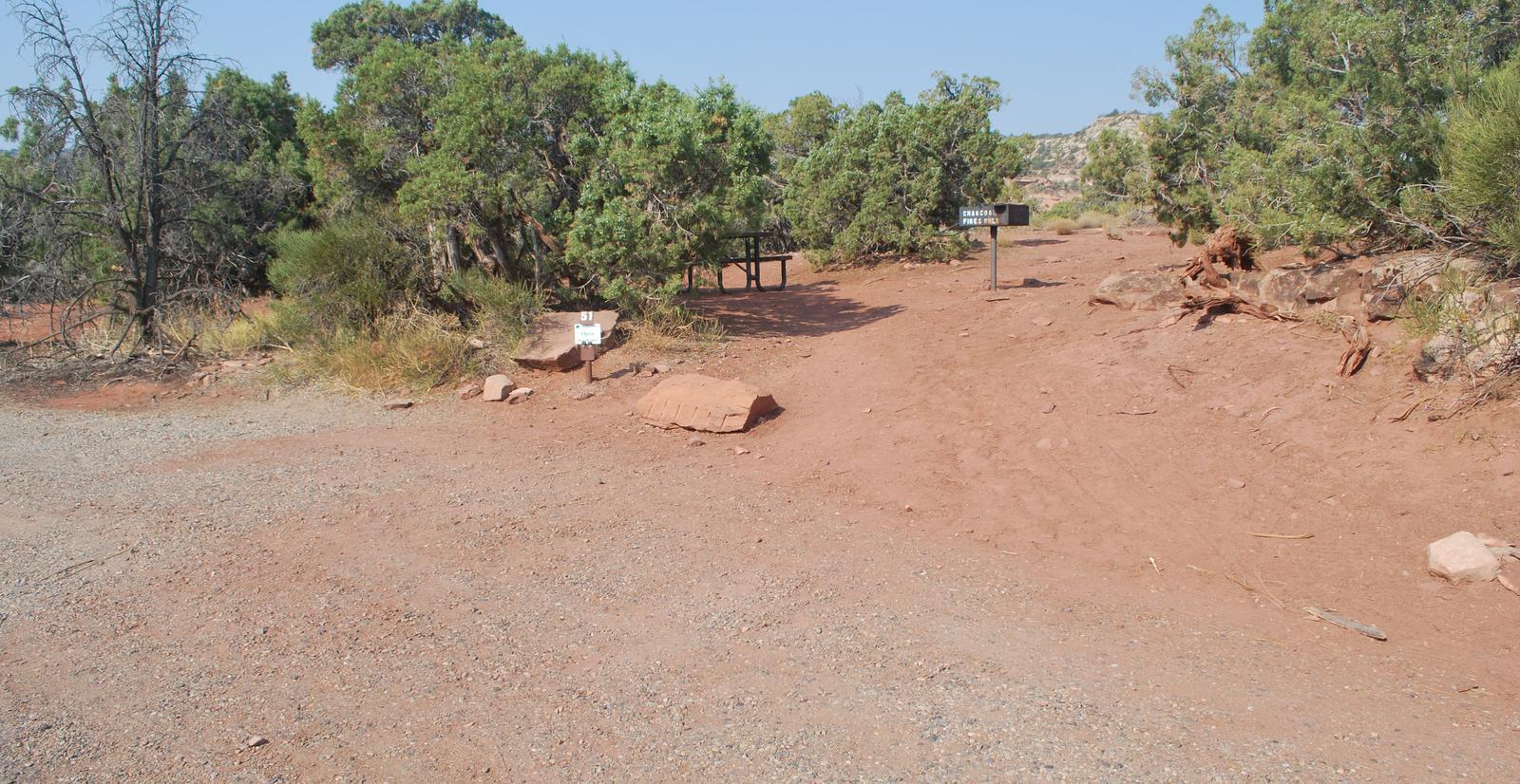 Loop B Site 51