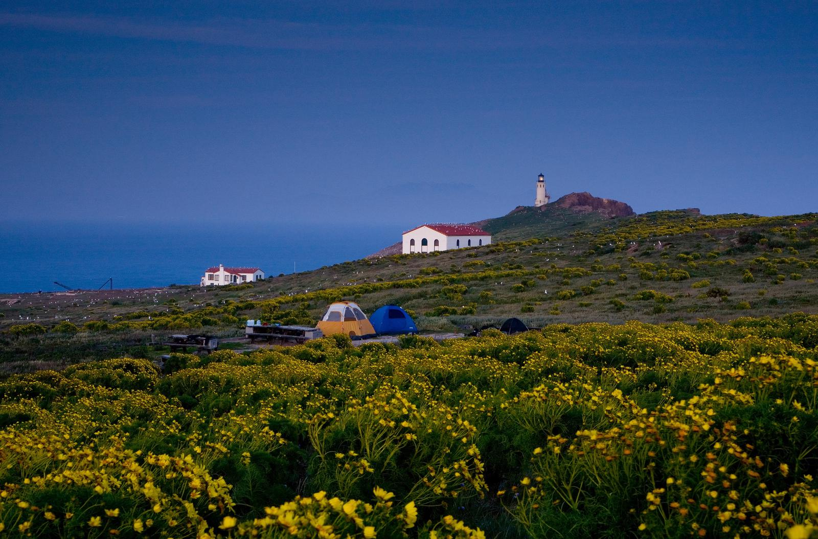 Two tents on terrace overlooking ocean, two buildings, and lighthouse.Anacapa Island