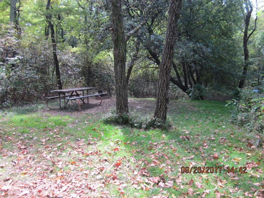 Loft Mountain Campground - Site 2