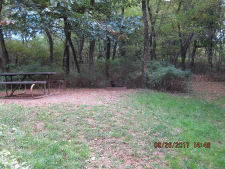 Loft Mountain Campground -Site 3Picnic table and fire pit on campsite