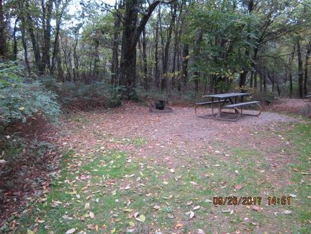 Loft Mountain Campground - Site 4