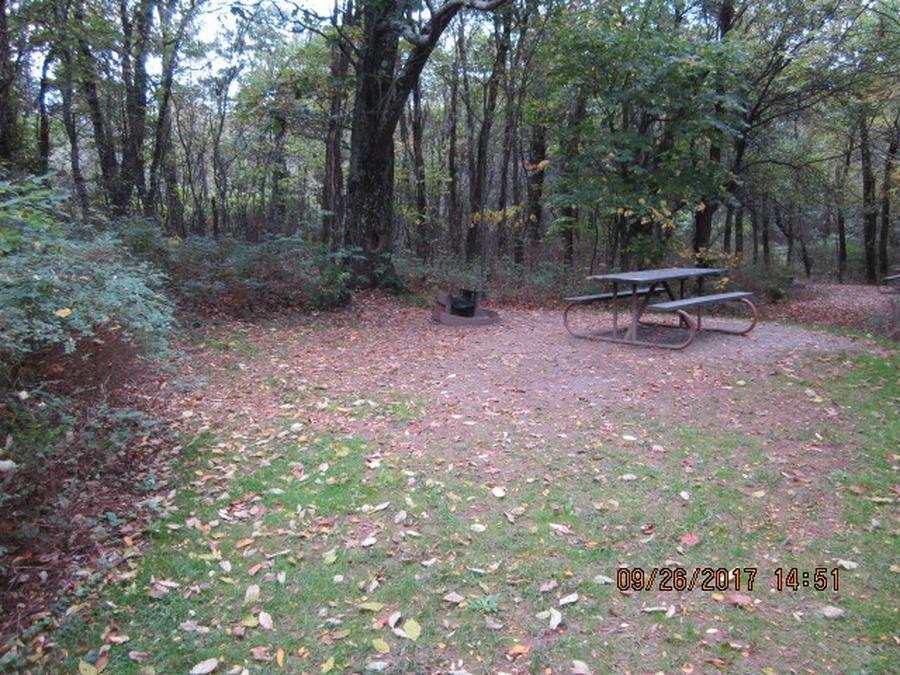 Loft Mountain Campground - Site 4
