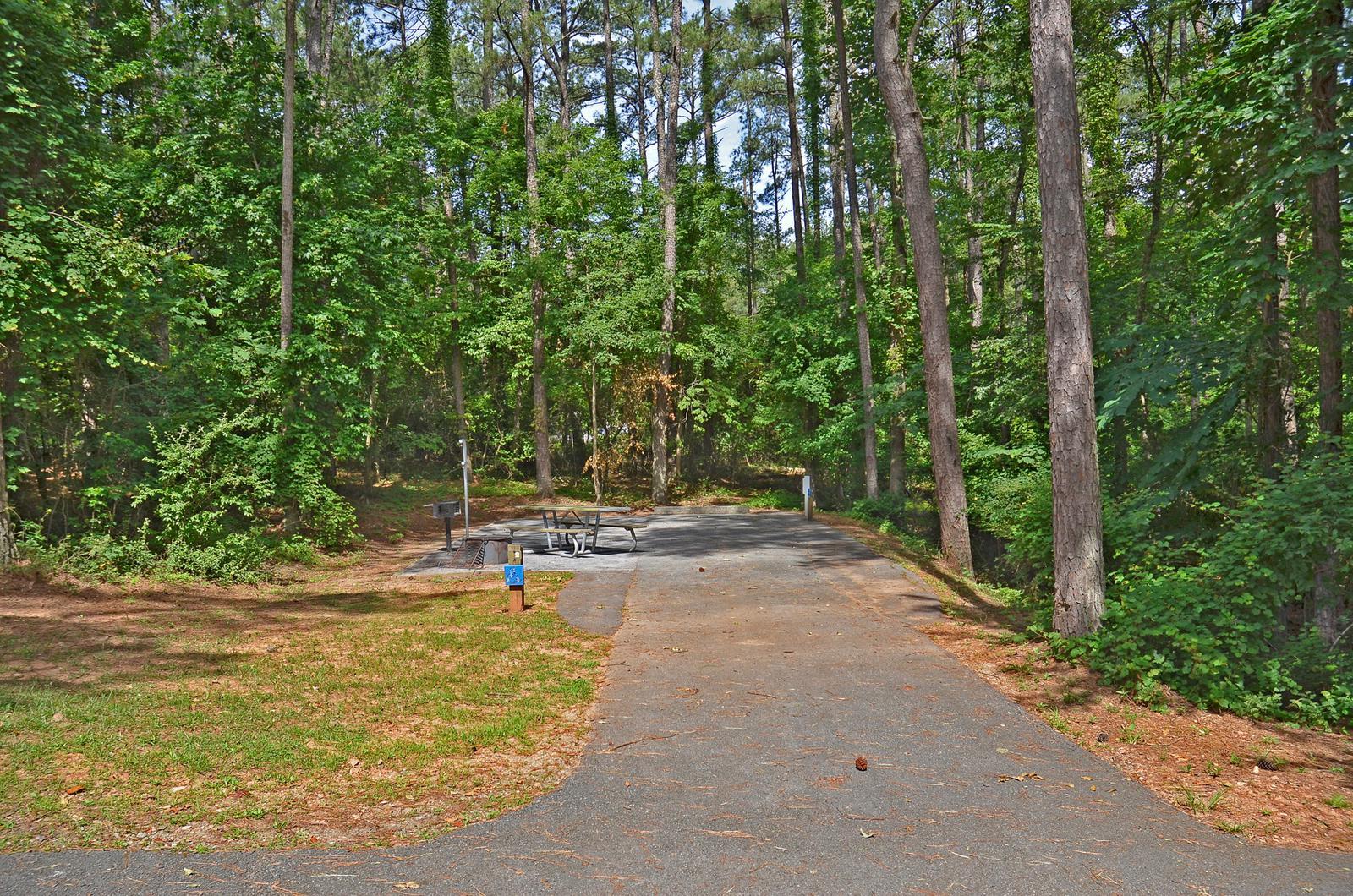 McKinney Campground Site 2