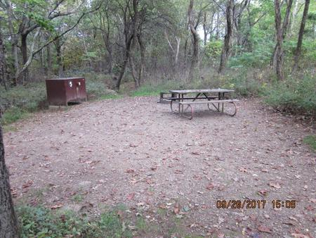 Loft Mountain Campground - Site 5Picnic table, food storage locker, and fire pit on campsite