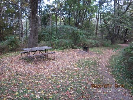 Loft Mountain Campground - Site 6Picnic table and fire pit on campsite