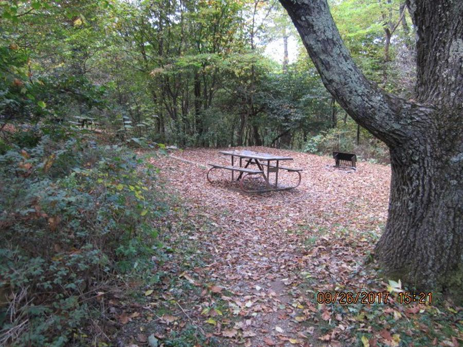 Loft Mountain Campground - Site 7