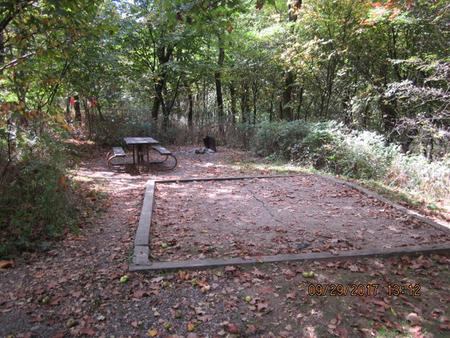 Loft Mountain Campground - Site 9Picnic table and fire pit on campsite