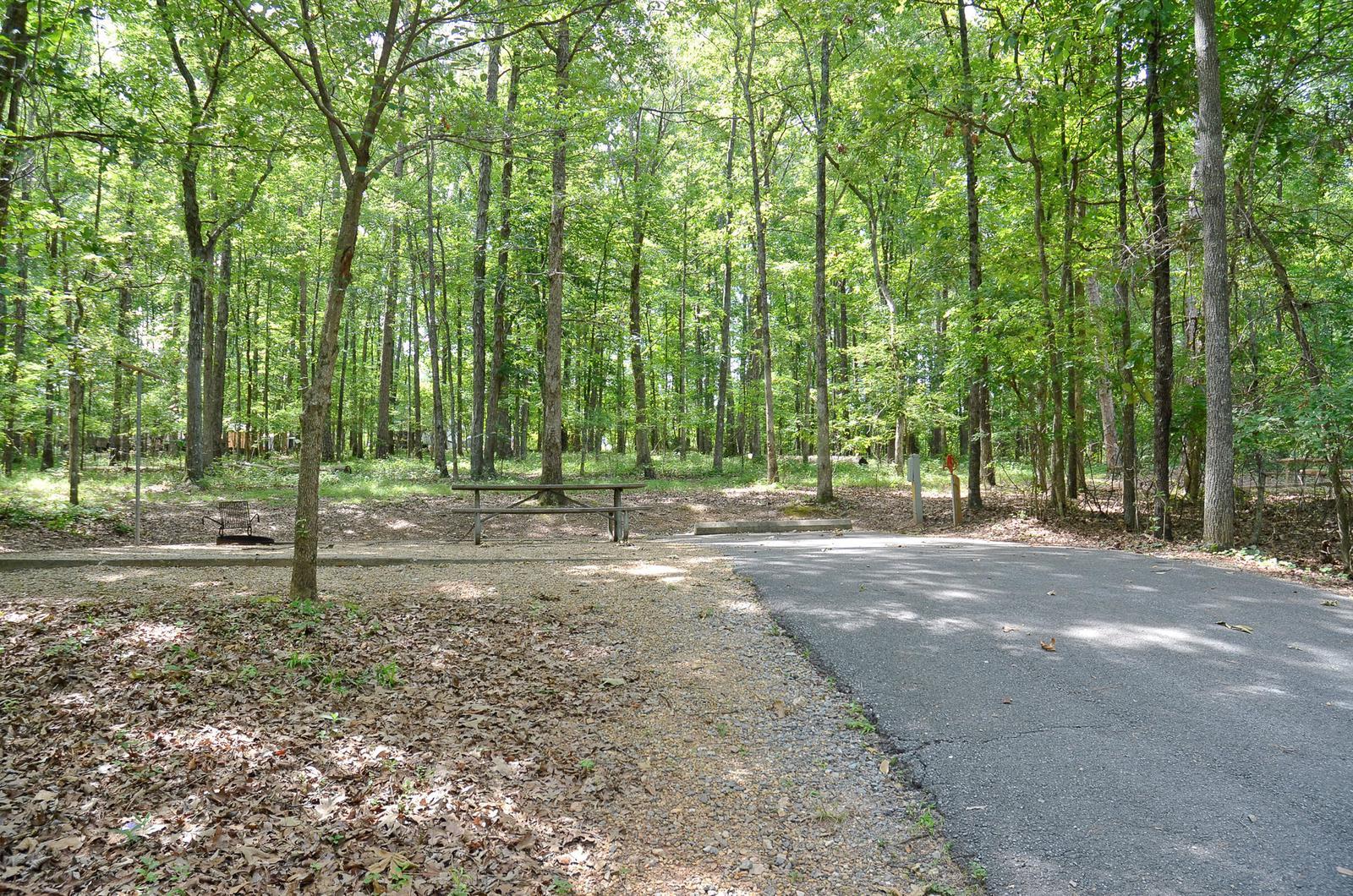 McKinney Campground Site 3