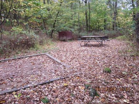 Loft Mountain Campground - Site 10Picnic table, food storage locker, and fire pit on campsite