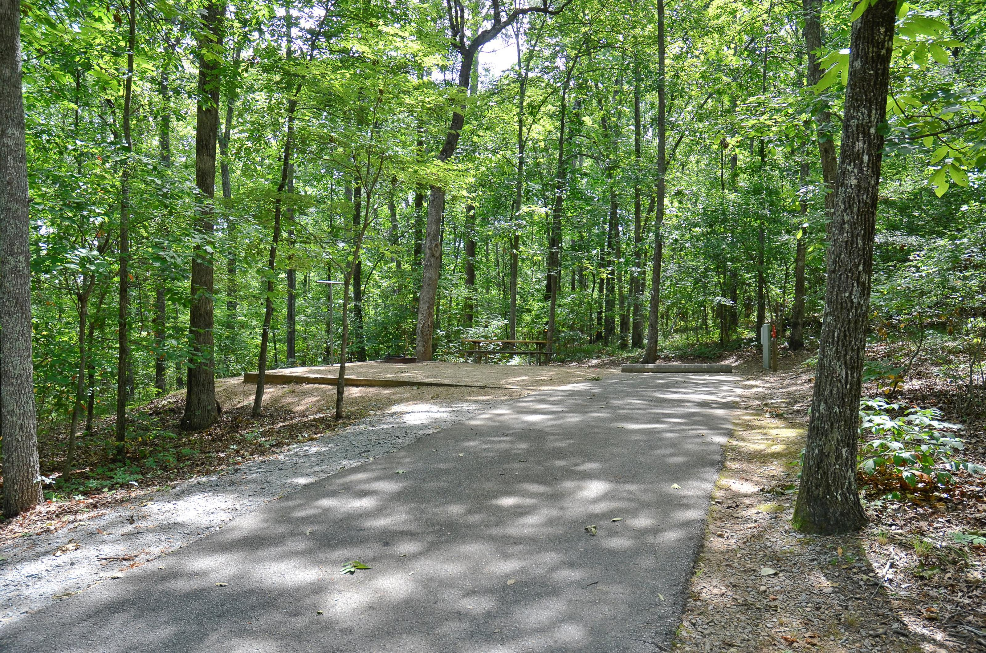 McKinney Campground Site 6