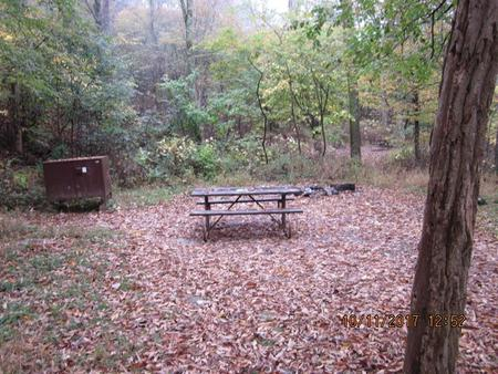 Loft Mountain Campground - Site 11Picnic table, food storage locker, and fire pit on campsite